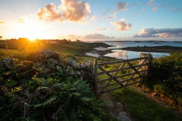 farm gate 1701 EM.jpg
