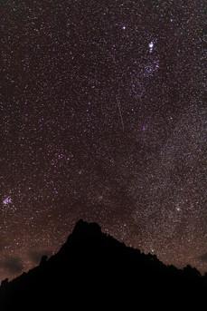 Mt Heale Stars 8679 EM.jpg