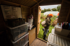 Seabird_Recovery_Project_shed_3037_ed_ma