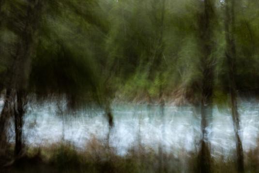 river through trees 3654 EM.jpg