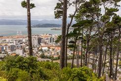 Wellington green space 2076 EM.jpg