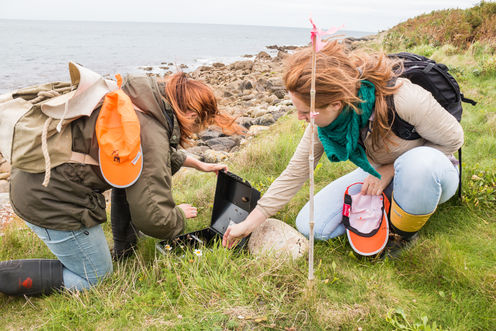 Seabird_Recovery_Project_monitoring-2_31