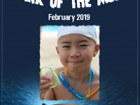 February 2019 - Shark of the Month