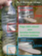 piege frelon asiatique apiKulteur