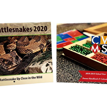 Rattle snake calendar designed by Polly Smith-Blackwell. CVMS calendar designed by Chelsea Owen. Printed by Printing Solutions.