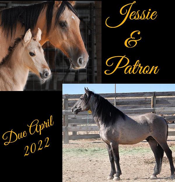 Jessie & Patron.jpg