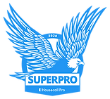 2020 Superpro eagle.png