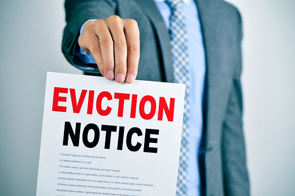 tampa eviction services