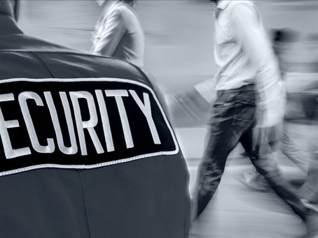 Protecting Your Business Through Sensible Security