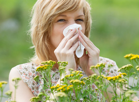 The Link Between Seasonal Allergies and Chronic Pain