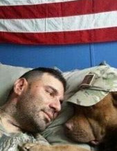 Military dogs and our troops