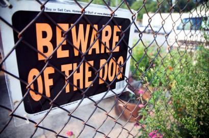 """""""Beware of Dog"""""""