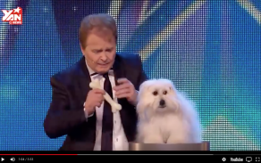 Ventriloquist With Live Dog