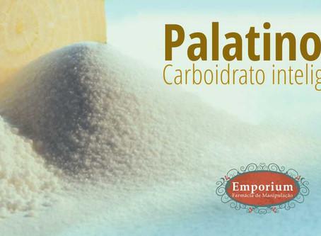 Palatinose - carboidrato inteligente