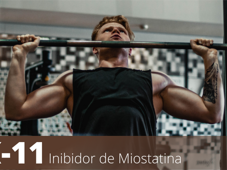 YK 11 | INIBIDOR DE MIOSTATINA