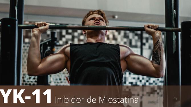 YK 11   INIBIDOR DE MIOSTATINA