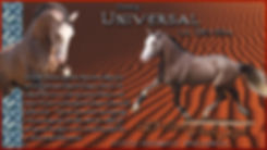 Universal-Aug2018w.jpg