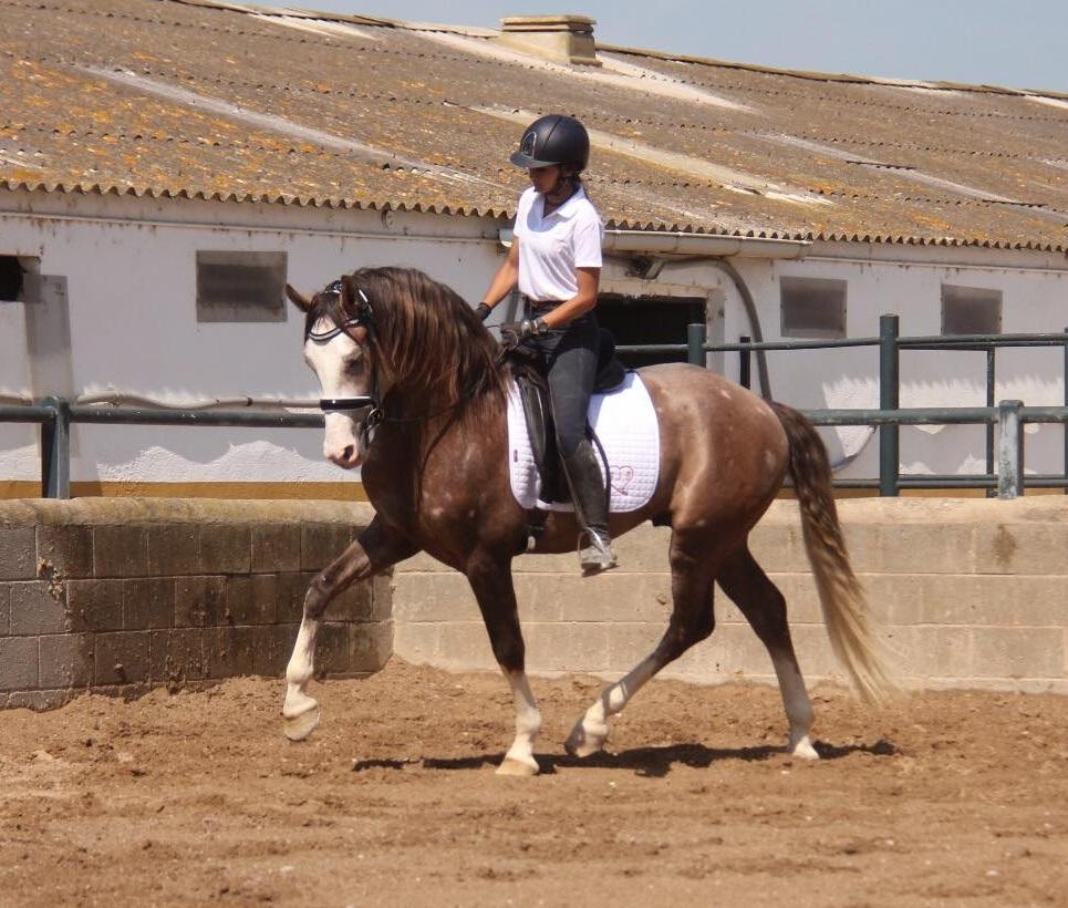 Uni and rider-cr