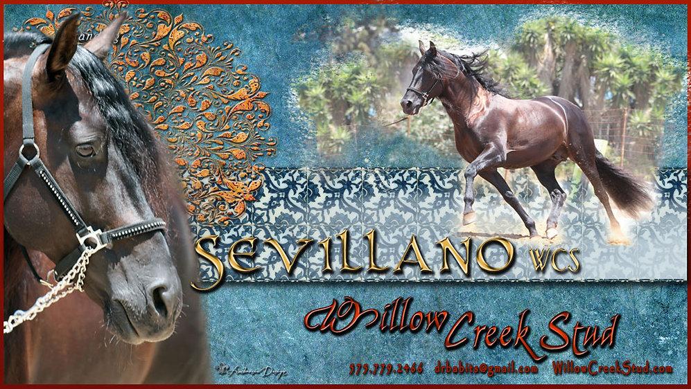 SEVILLANO-banner-w.jpg