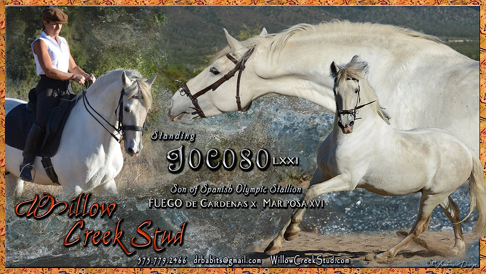 jocoso-Aug2018w.jpg