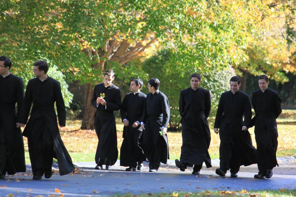 brothers walking.jpg