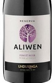 Undurrage, Maipo Valley - Allwen Pinot Noir