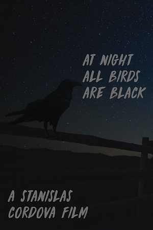 At Night All Birds Are Black poster