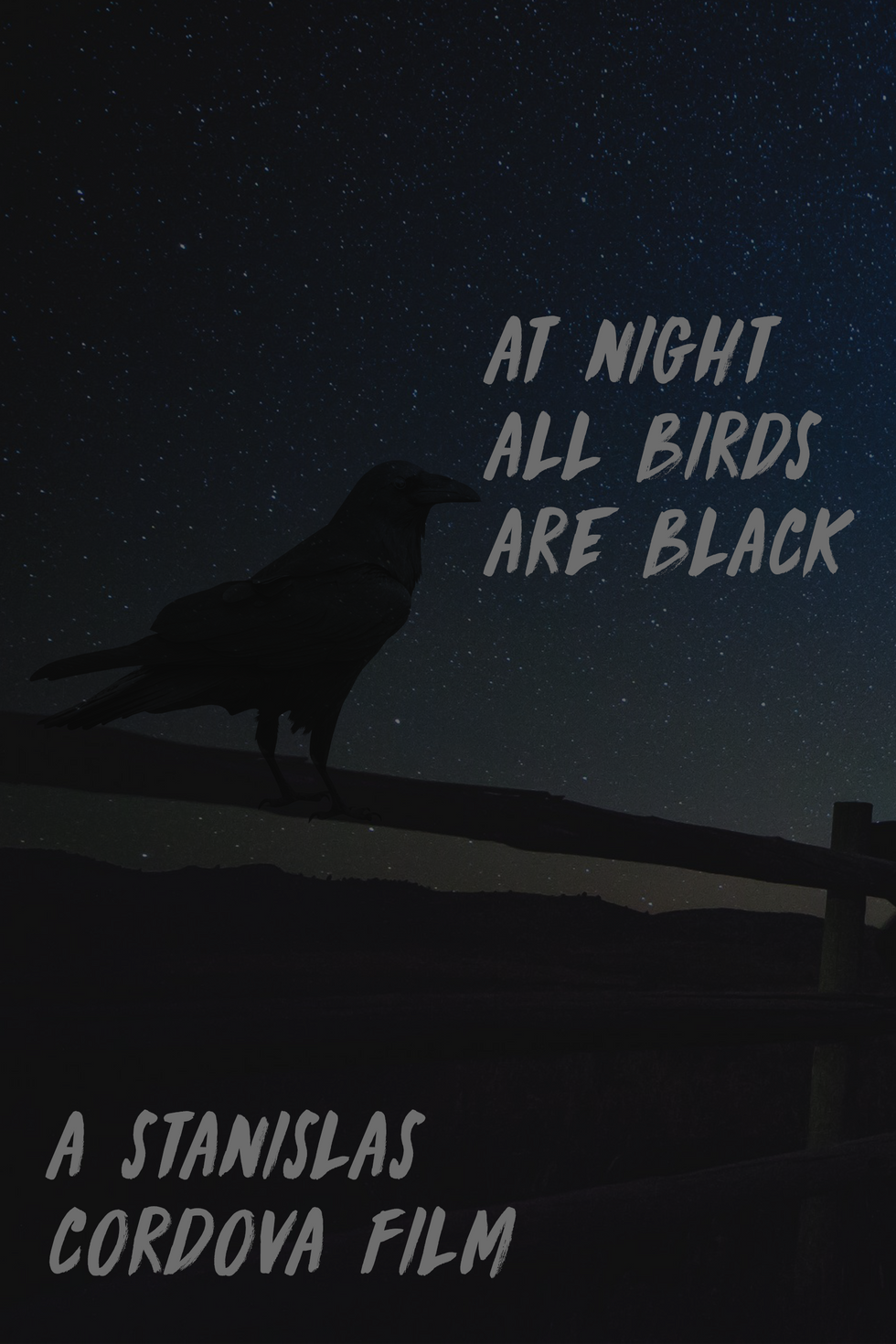 At Night All Birds Are Black.png
