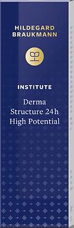 INSTITUTE Derma Structure 24h High Potential