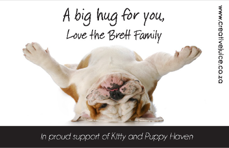 Kitty & Puppy Haven Dogs C