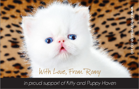 Kitty & Puppy Haven Cats C