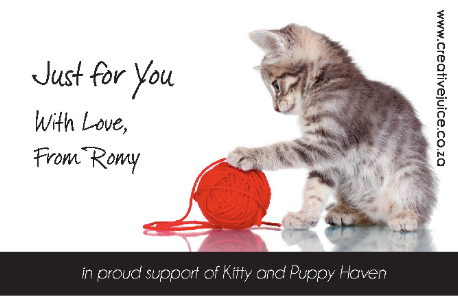 Kitty & Puppy Haven Cats B