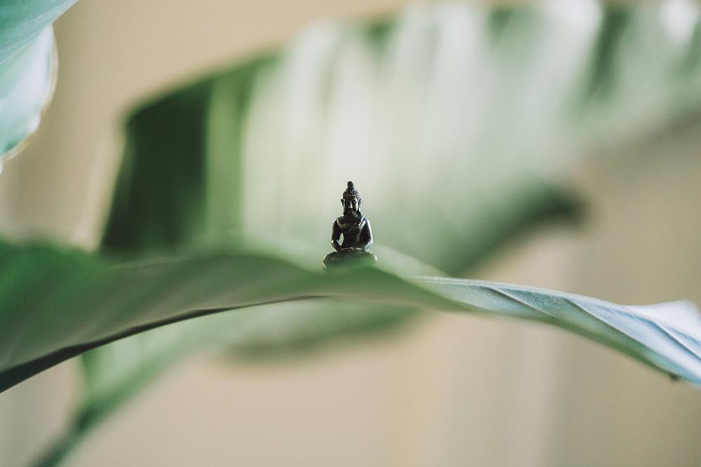 Miniature Buddha statue sitting on plant frong