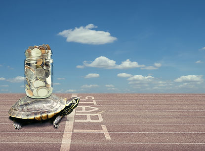 Turtle carrying a stack of money savings