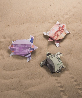 origami turtles from banknotes.jpg