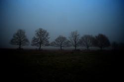 Misty Monday