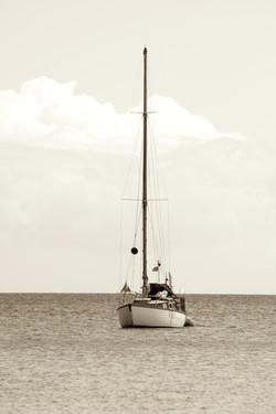 Sail the shore
