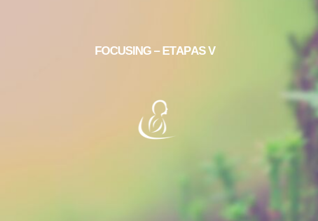 Nivel III Focusing – Etapas V