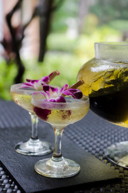 Attendees were served refreshing drinks such as Kombucha Cure