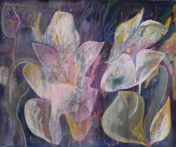 Magic Lilies