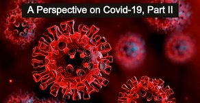 A Perspective on COVID-19, Part II (Quarantine: the Blunt Instrument) by Kevin Diehl