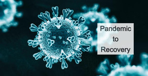 Pandemic to Recovery