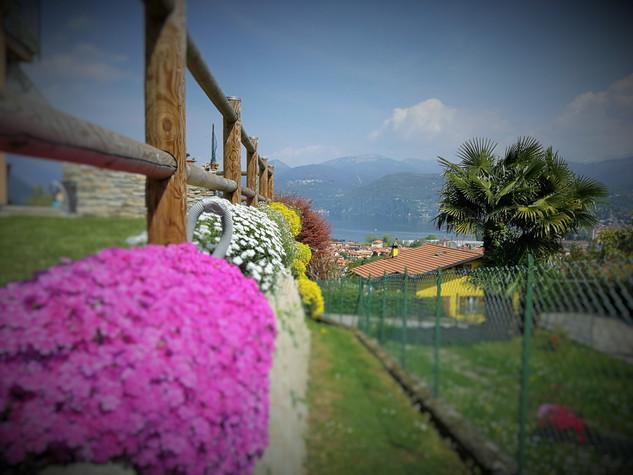 I fiori del tuo giardino