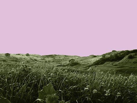 Vals Think Pink #3.jpg
