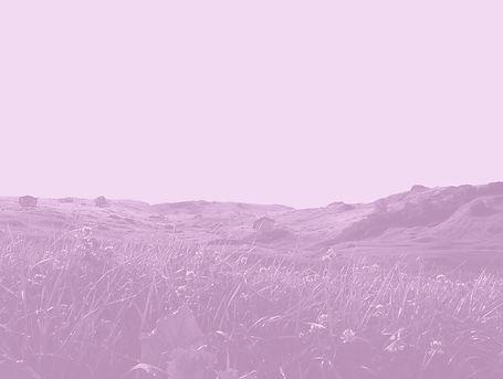 vals think pink #6.jpg