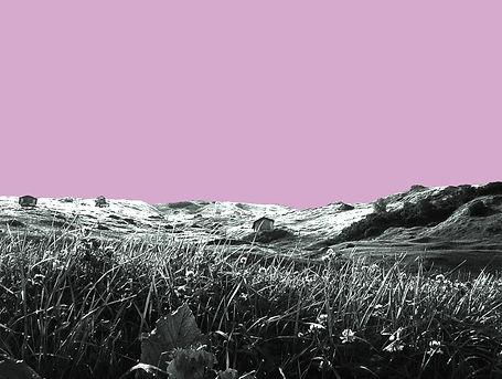 Vals Think Pink #1.jpg