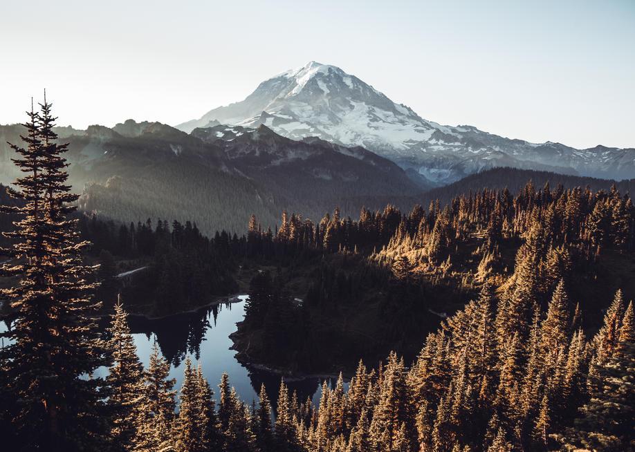 Tolmie Peak (8).jpg