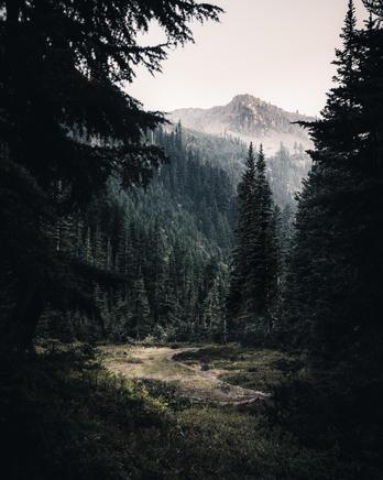Lake Ann (35)-Edit.jpg