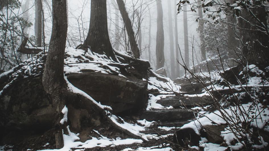 Raven Cliff Falls Trail, SC