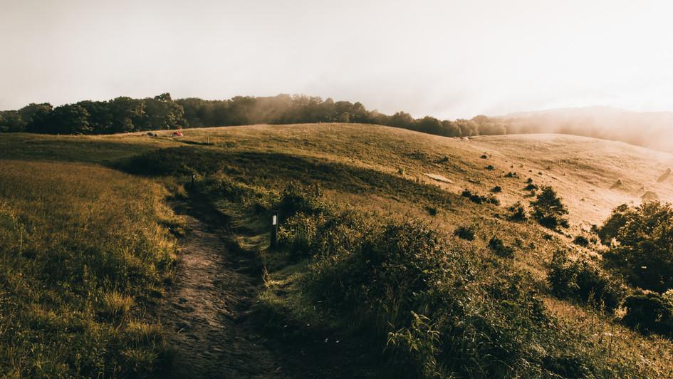 Appalachian Trail, NC